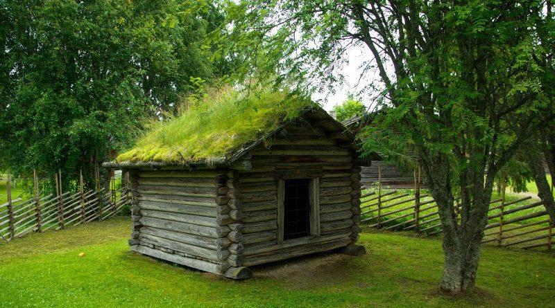 Giv kolonihaven eller sommerhuset det rigtige hyggelige look med et grønt tag